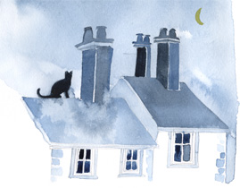Animal Astrology Report Image